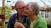 Elderly couple smelling a young plant in greenhouse