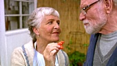 Elderly couple tasting freshly picked tomato
