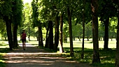 Woman jogging in park