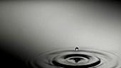 Ein Tropfen fällt ins Wasser (Close Up)