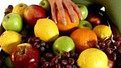 Frau hält Korb mit frischem Obst