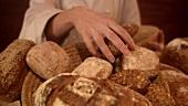 Baker bringing freshly baked bread