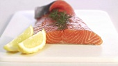 Graved Lachs mit Zitronen und Dill (Close Up)
