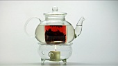 Teapot on warmer
