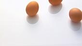 Rollende braune Eier