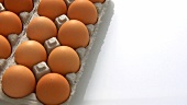 Brown eggs in egg boxes