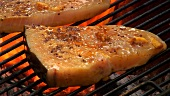 Grilling swordfish steaks