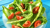 Romaine lettuce with tomatoes