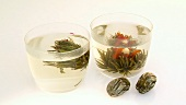Jasmine tea flowers in two tea glasses