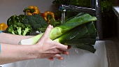 Washing leeks under running water