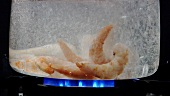 Peeled prawns falling into boiling water
