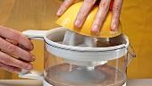 Squeezing pink grapefruit with electric citrus squeezer