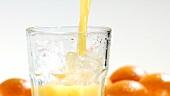 Orangensaft in ein Glas mit Eiswürfeln gießen
