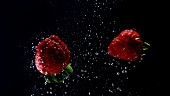 Two strawberries floating in water (black background)