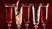 Rosesekt in Gläser einschenken