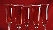 Sparkling rosé wine in five glasses