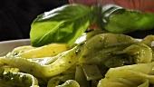 Bandnudeln mit Pesto, mit frischem Basilikum garnieren