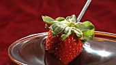 Dipping strawberry in chocolate sauce