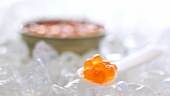Spoonful of salmon caviar on ice, tin of caviar behind