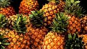 Mehrere Ananas