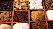 Various types of sugar in type case