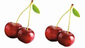 Two pairs of cherries