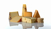 Various types of cheese with crackers
