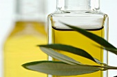 Bottle of olive oil with twig, close-up