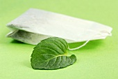 Tea bag and mint leaf, close-up
