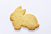 Rabbit biscuit