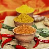 Curry, Kurkuma und Chilipulver und rote Chilischoten