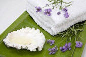 Lavender, towels and shell on tray, close-up