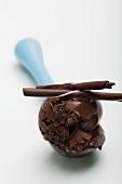 Scoop of chocolate ice cream on ice cream disher
