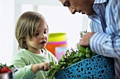 Father and son examining fresh herbs in kitchen