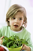Boy (3-4) holding bowl of fresh basil, close-up