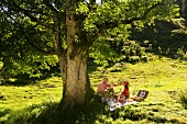 Couple having picnic in meadow, man feeding woman