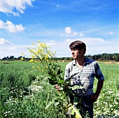Man standing in field, holding an oilseed rape plant
