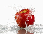 Red apple with splashing water