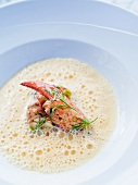 Foamy lobster soup