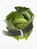 Savoy cabbage with a belt round it