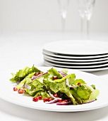 Salad of Greens with Onions and Pomegranate Seeds