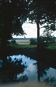 Trees around the pond at Sissinghurst Castle Garden overlooking fields in background, UK
