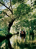 Boat trip on romantic river at Spreewald