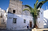 Whitewashed house at Siesta, Vejer de la Frontera in Andalusia, Spain