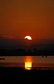 View of sunset at Lake Neusiedl in Austria, Silhouette