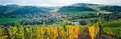 Weinlandschaft mit dem Winzerdorf Oberhausen an der Nahe