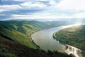 Imposante Weinbergslage am Rhein: Bopparder Hamm