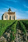 Weingut Appelation Chablis im Burgund