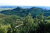 View of valley over vineyards at The Rocher des Verges, Languedoc