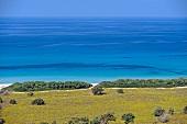 Korsika, Insel, Calvi, Strand Meer, Küste,X